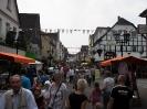 Meller Geranienmarkt 2011