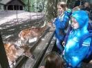 Tierparkrallye 2014_8